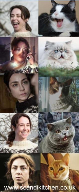 Catslookinglikesarahlund